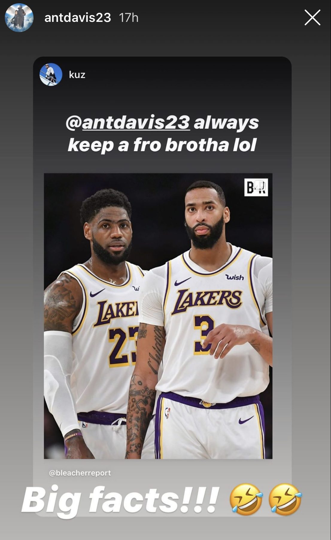 LeBron James and Anthony Davi